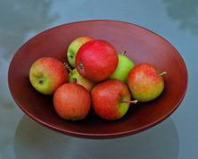 Ahrista Apples